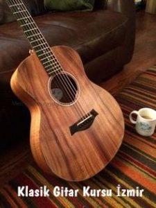 Klasik gitar kursu İzmir